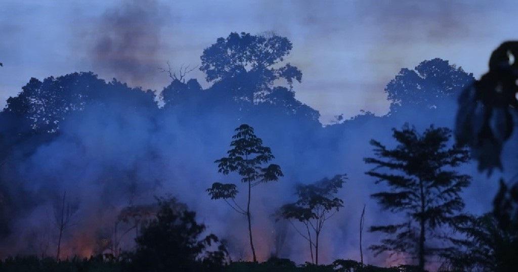 Пожары в джунглях Амазонки